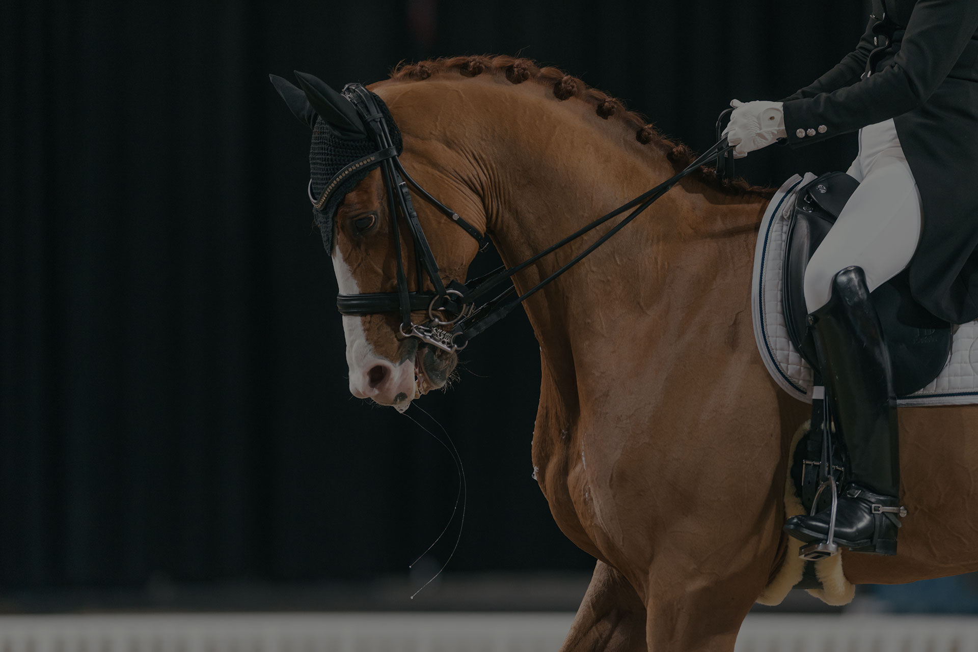 Malin Rinne at the Dressage event in the Sweden International Horse Show at Friends arena